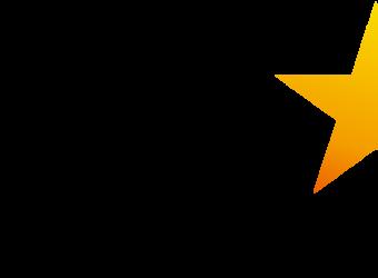 the georgia star logo